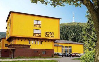 Až 6denní pobyt pro 2 s polopenzí, saunou a fitness v hotelu Zlatý Chlum v Jeseníkách