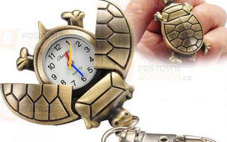 Želva klíčenka a hodinky v 1 a poštovné ZDARMA! - 9999920051