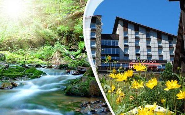 Hotel Zadov na Šumavě pro DVA na 3/6 dní s wellness