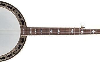 Pětistrunné banjo Recording King R35-BR