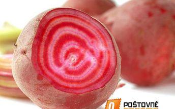 Řepa salátová růžovobílá - balení 10 semen a poštovné ZDARMA s dodáním do 3 dnů! - 9999909763