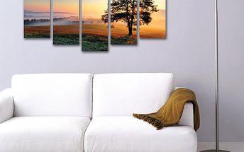 5dílný obraz Kompozice se stromem