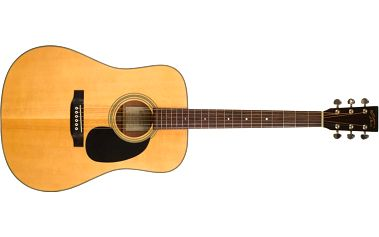 Akustická kytara Recording King RD-10