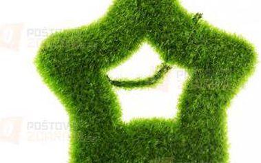 Dekorace hvězda - zelená a poštovné ZDARMA! - 9999921397
