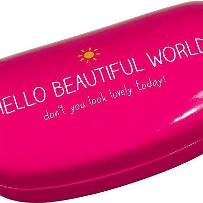 Pouzdro na brýle Hello Beautiful World