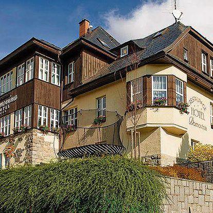 6 nebo 8denní pobyt s polopenzí a wellness v hotelu Domovina v Krkonoších