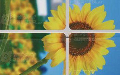Samolepka do kuchyně - vzor slunečnice a poštovné ZDARMA! - 9999921461