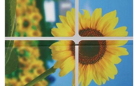 Samolepka do kuchyně - vzor slunečnice