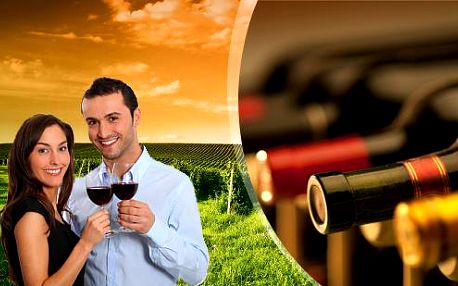 Exkurze do vinného sklípku v Hustopečích s degustací vína, jídlem a dopravou v ceně