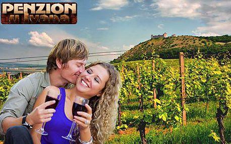 Vinařský pobyt s degustací přívlastkových vín a zabijačkovým rautem pro dva + dítě do 3 let zdarma