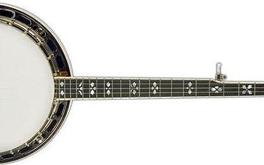 Pětistrunné banjo Recording King RK-R80