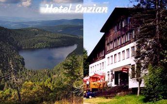 ŽELEZNÁ RUDA - 4 dny v hotelu Enzian*** s chutnou polopenzí pro 2 květen-září