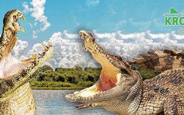 Hrůzostrašný večer s krokodýly v Galerii Krokodýl