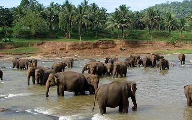 Zlatý okruh Srí Lankou, Asie, Srí Lanka
