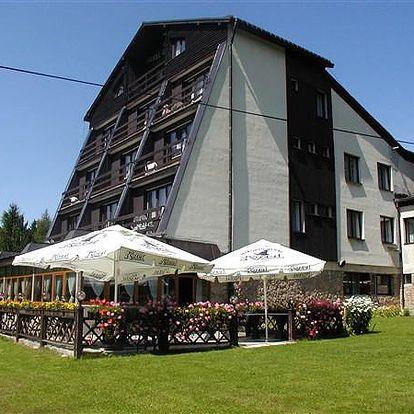 Hotel Golden, Krkonoše a Podkrkonoší, Česká republika, snídaně