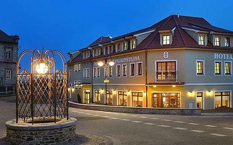 Hotel Záviš z Falknštejna, Jižní Čechy, Česká republika, vlastní doprava