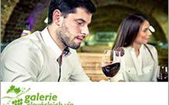 Degustace vín pro 2