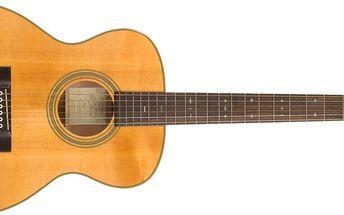 Akustická kytara Recording King RO-16
