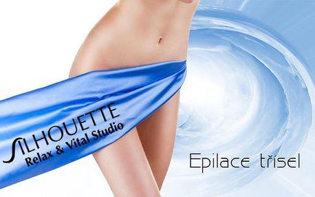 FOTOEPILACE TŘÍSEL - Bikini line nebo kompletní brazilská depilace! Užívejte si hladkou pokožku!