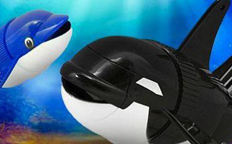 Robotická kosatka – 2 kusy: plave, skáče, dělá kotrmelce! Objevte podvodní svět.
