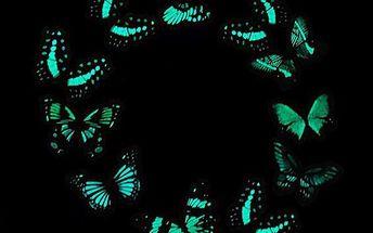 10 kusů svítících motýlků