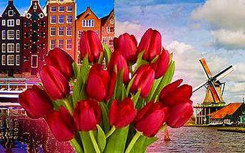 To nejlepší z Holandska! 5denní zájezd pro 1 osobu. Vyberte si ze 2 termínů!