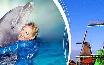 Amsterdam, Delfinárium a větrné mlýny: 4denní zájezd pro 1 osobu vč. ubytování!