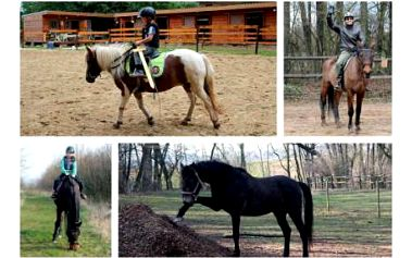 Hodinová vyjížďka na koni s jezdeckou školou Macek!