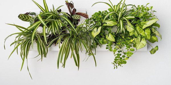Vertikální květináč s neviditelným stojanem HOH! Duo Smart Bianco, 78x27 cm - doprava zdarma!