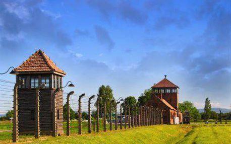 Poznávací zájezd do Osvětimi a Březinky