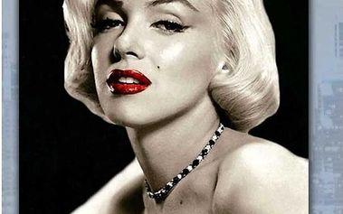 Obraz skleněný Marilyn Monroe HS055