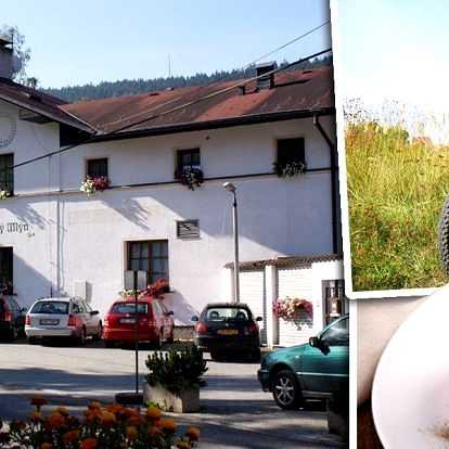 Pobyt v penzionu Klášterský mlýn pro 2 na 3 dny. Polopenze, lahev vína, digestiv po večeři a další.