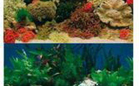 Trixie Akvarijní pozadí oboustranné (sladkovodní-mořský motiv) 1m/49cm