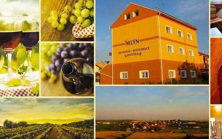 3denní pobyt pro dva s polopenzí a 2 lahvemi moravského vína v srdci vinařského regionu Pálava.