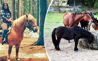 Projížďky na koních pro malé i velké