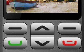 Aligator A870 GPS Grey