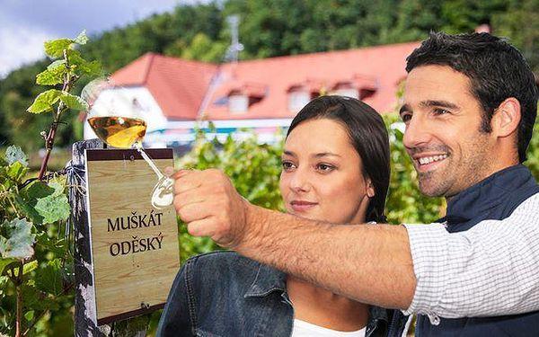 Až 5denní pobyt u Třebíče v hotelu Sádek s polopenzí a neomezenou konzumací vína pro 2