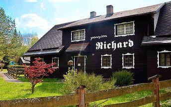 3denní pobyt se snídaněmi a saunou v penzionu Richard v Jeseníkách pro 2 osoby