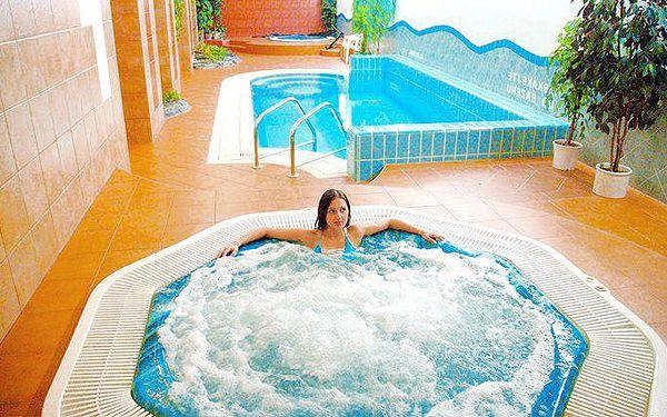 3denní wellness pobyt v hotelu Synot na Slovácku pro 2 osoby s polopenzí
