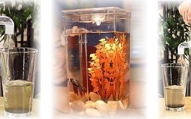 Samočistící akvárium - skvělý dárek pro malé akvaristy! Poříďte si akvárium, které se samo čistí !