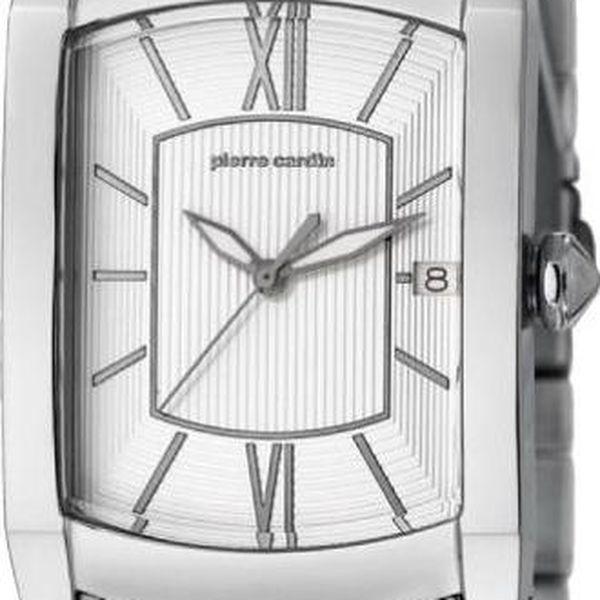 Pánské hodinky Pierre Cardin PC105391F02