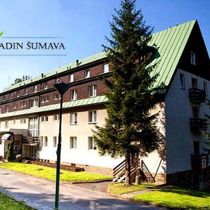 Šumava v letní sezóně v Hotelu Engadin pro 2 osoby s polopenzí + dítě do 3 let ZDARMA