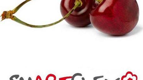 Smartflex flower třešeň 0,7kg - modelovací hmota