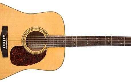 Akustická kytara Recording King RD-16-N
