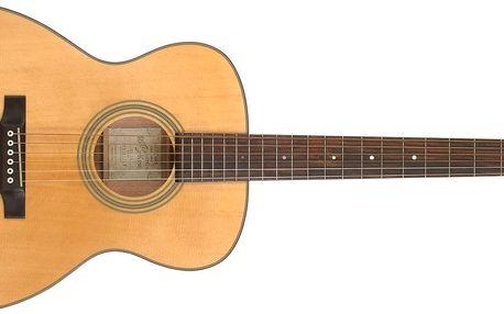 Akustická kytara Recording King RO-10