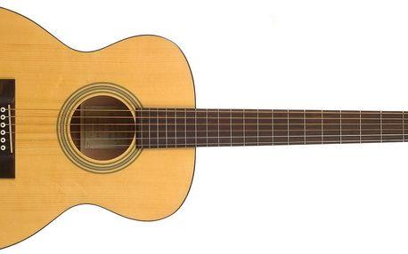 Akustická kytara Recording King RO-06