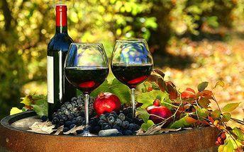 3denní pobyt pro 2 s degustací vína v penzionu Šatovské lípy na jižní Moravě