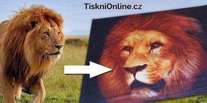 Tiskni-online.cz