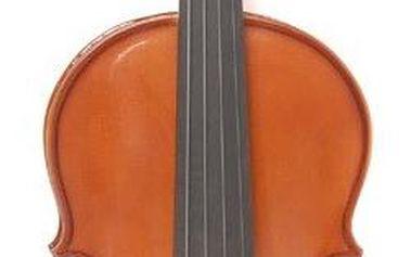 Akustické housle Dowina AV34