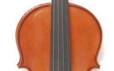 Akustické housle Dowina AV12